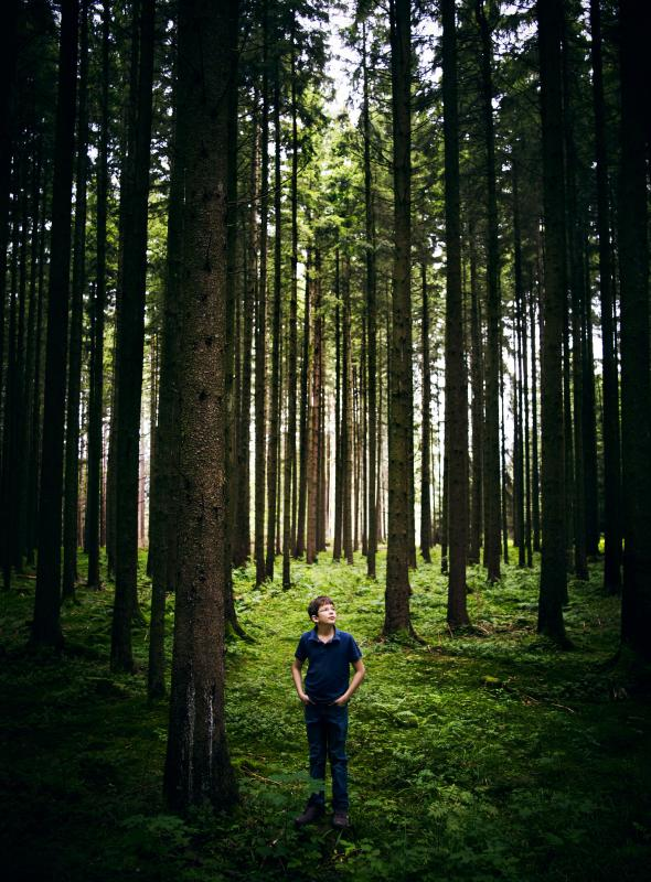 german-child-million-trees.adapt.590.1.jpg
