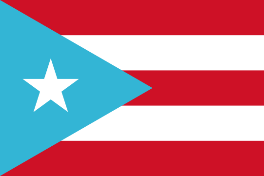 A red and blue flag Description automatically generated with medium confidence