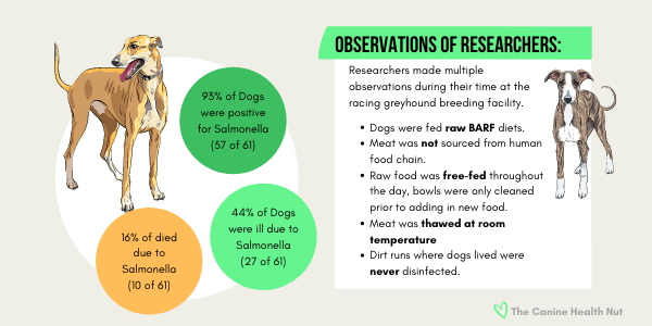 Greyhound Breeding Facility Salmonella outbreak investigation findings for raw BARF fed dogs.