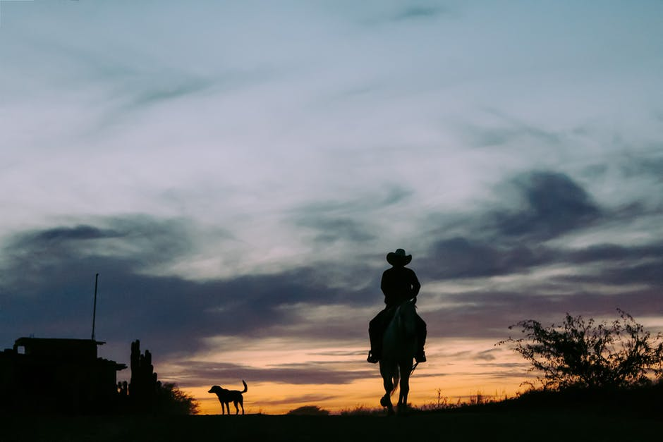 Silhouette of a person riding a horse.