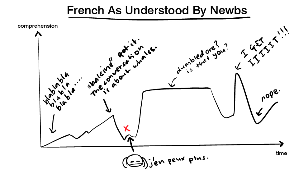 Graph showing how French is understood by newbs