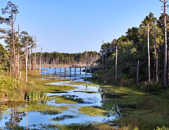 Coastal Dune Lakes - A very unique geographicalfeature that can only be found in Australia, Madagascar, Oregon, New Zealand and of course, in Walton County.