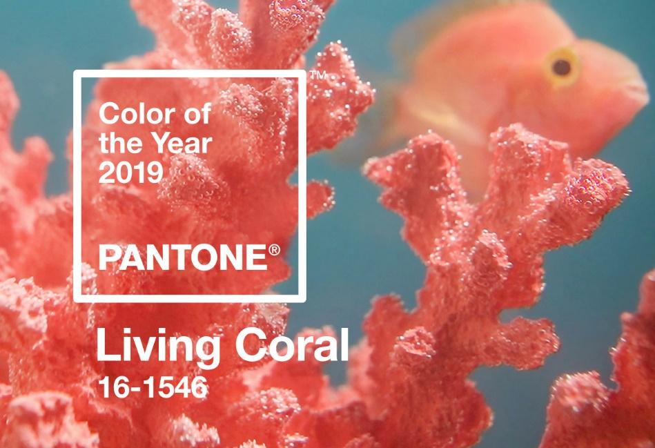 Image result for pantone coral