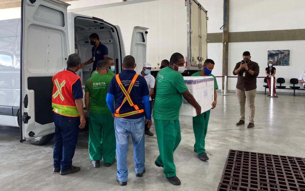 Doses serão conferidas e contadas, para posteriormente serem distribuídas às cidades baianas — Foto: Camila Oliveira/TV Bahia
