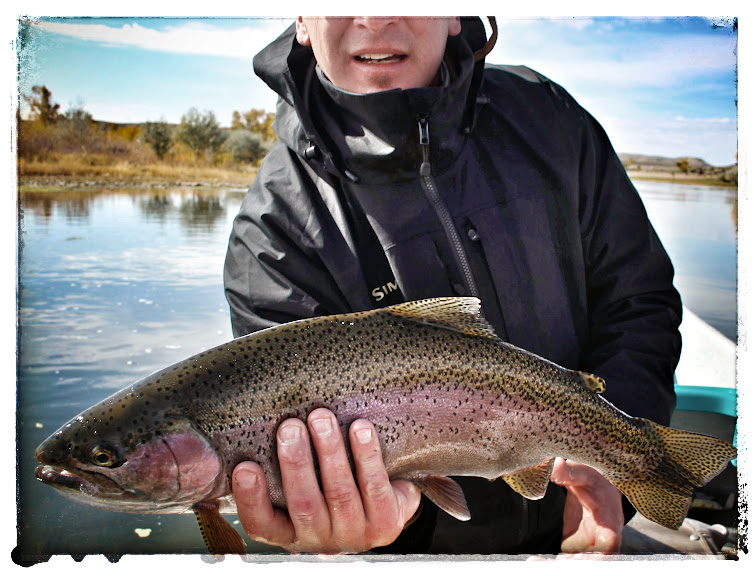 Green River Fly Fishing Guide Wyoming