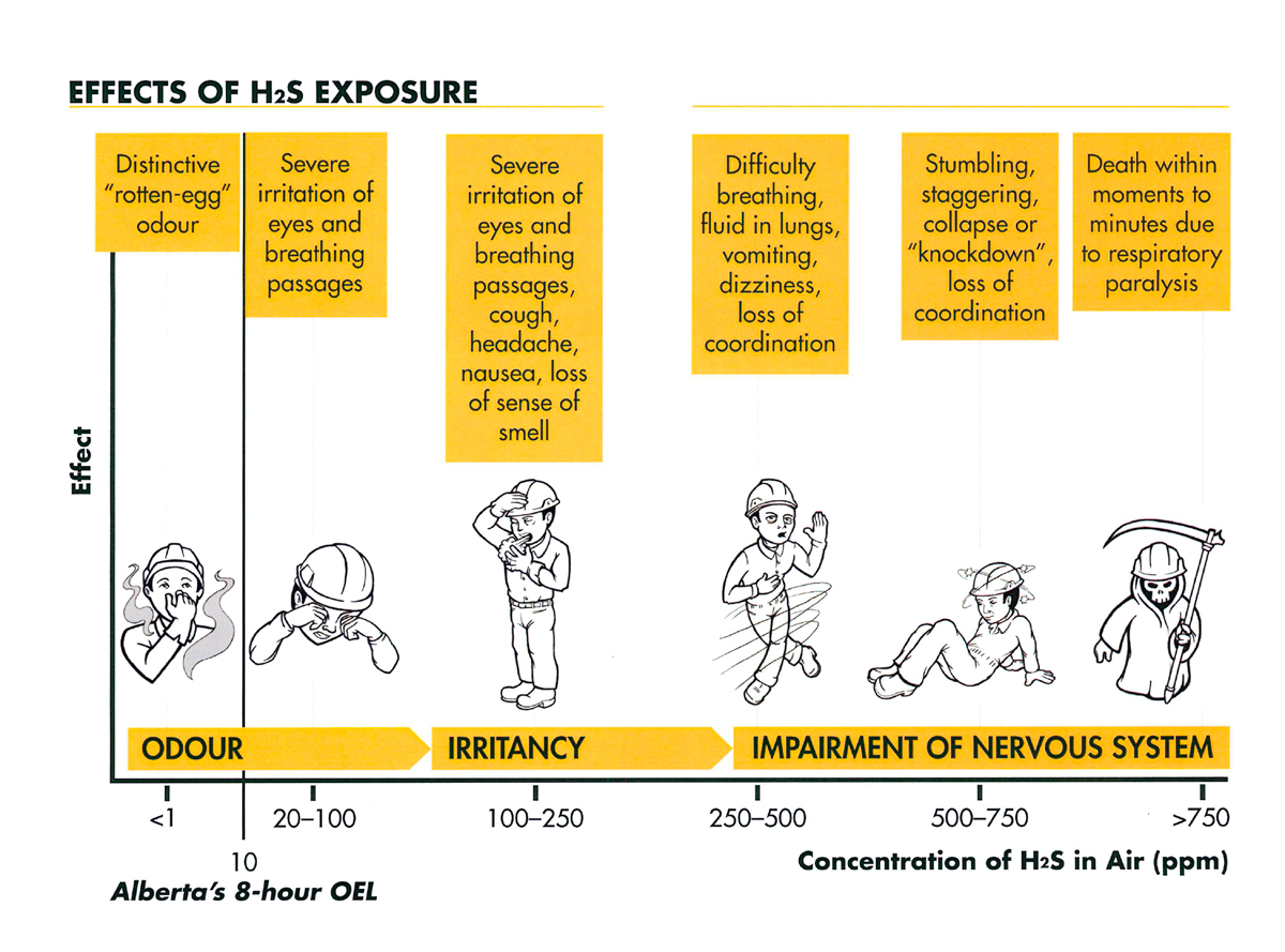Effects of H2S exposure, effects of hydrogen sulphide exposure