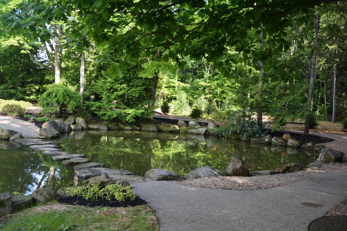 stone path and pond in Dawes Arboretum
