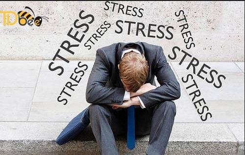nn do stress.jpg