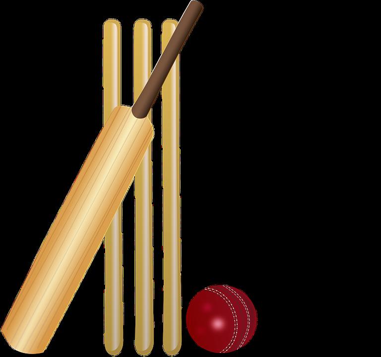 Cricket, Cricket Bat, Bat, ...