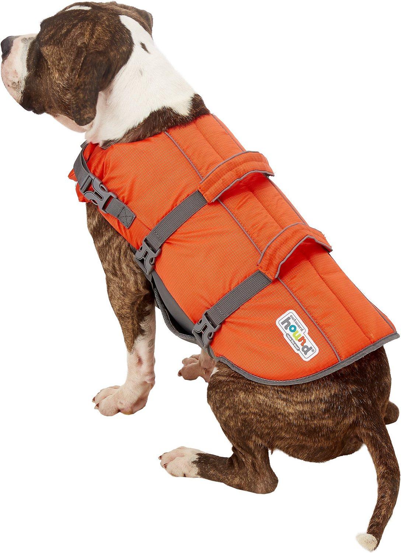 dog wearing Outward Hound life jacket