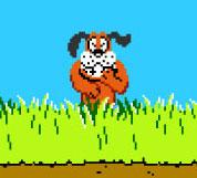 Image result for duckhunt dog