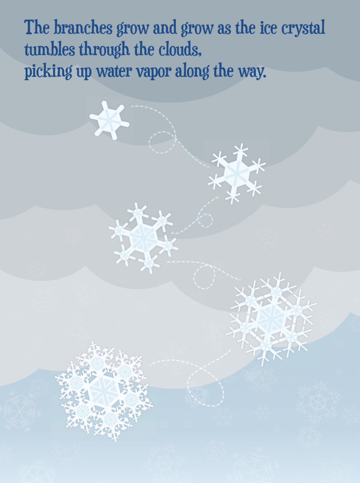 Drawing of five snowflakes falling from the sky. Text reads: The branches grow and grow as the ice crystal tumbles through the clouds, picking up water vapor along the way.
