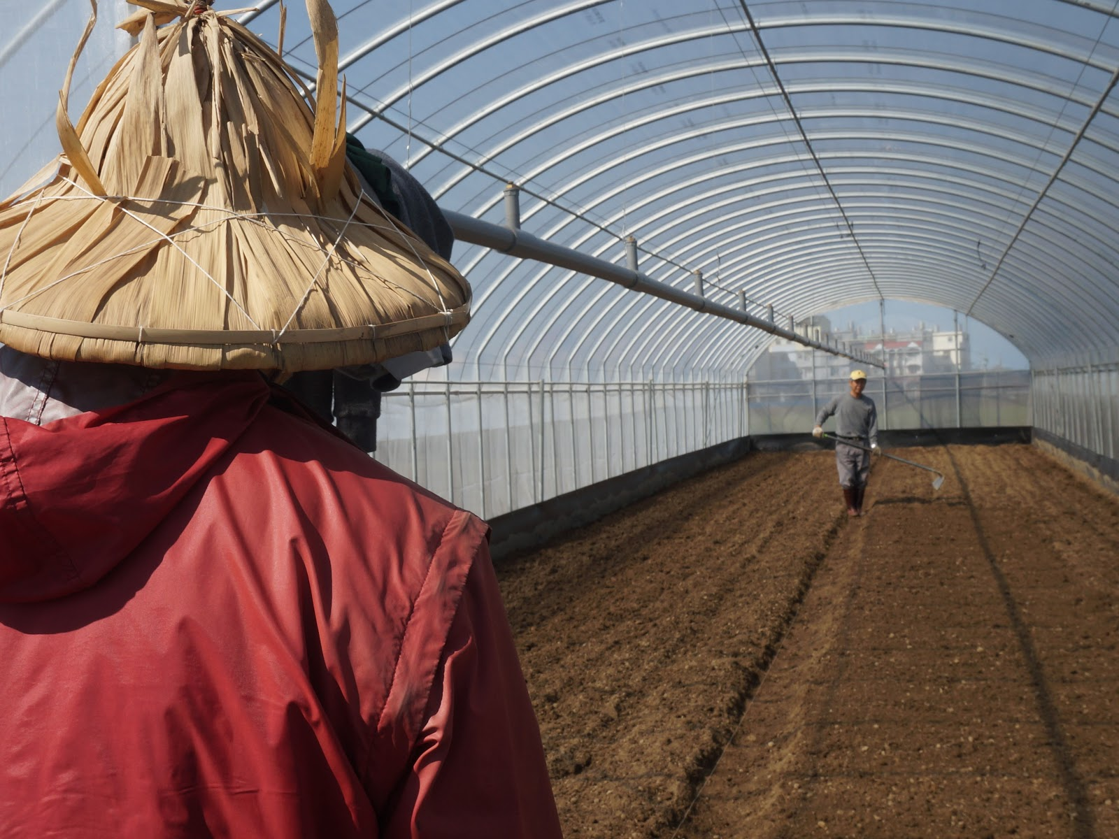 一大早吳文岳便到菜園整理土壤,準備種下育好的菜苗-2.jpg