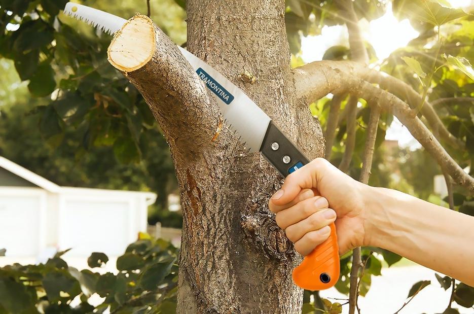 Mão segurando faca  Descrição gerada automaticamente com confiança média