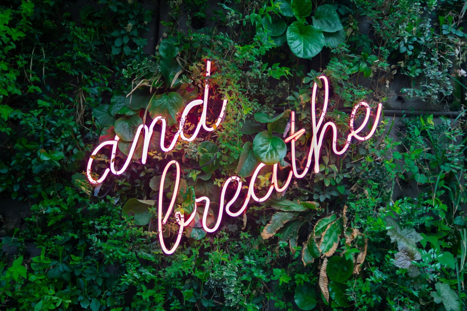 and breathe. Take time for yourself.