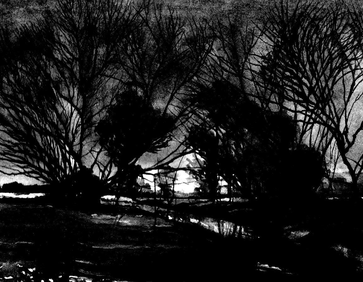 TWILIGHT SILHOUETTE II - Illustration (landscape); Sketch, MMXIII - Ink on carton - 9,84 X 11,81 in.jpg