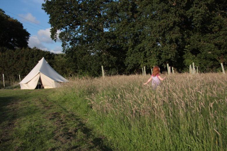 Quiet camping in Sussex