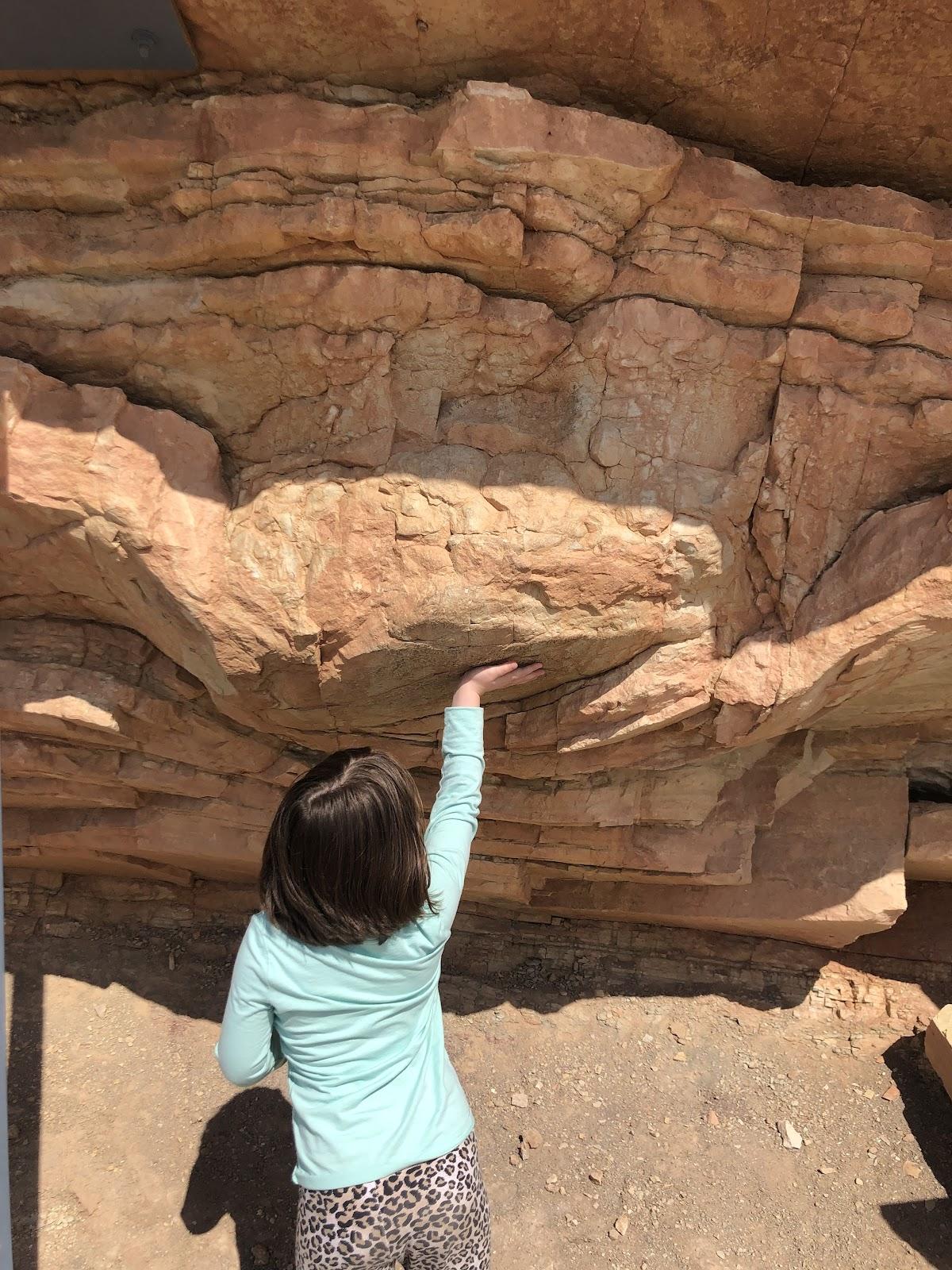 dinosaur ridge footprint