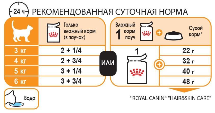 E:\RC\Launches&product info\Cats\FCN wet 2017\FCN WET_INTENSE BEAUTY in gravy\BEAUTY-J-TAB-BOX-FCNW-S-1.jpg