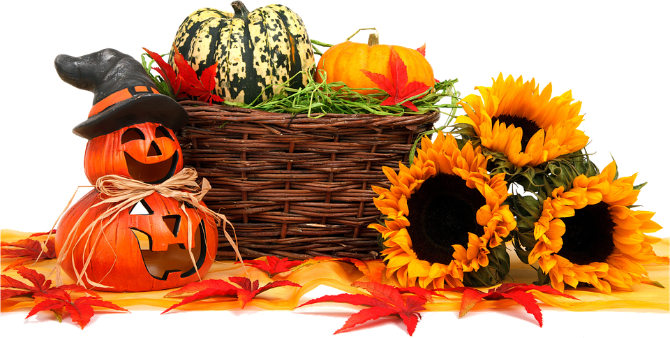 Free illustration: Autumn, Food, Thanksgiving - Free Image on ...