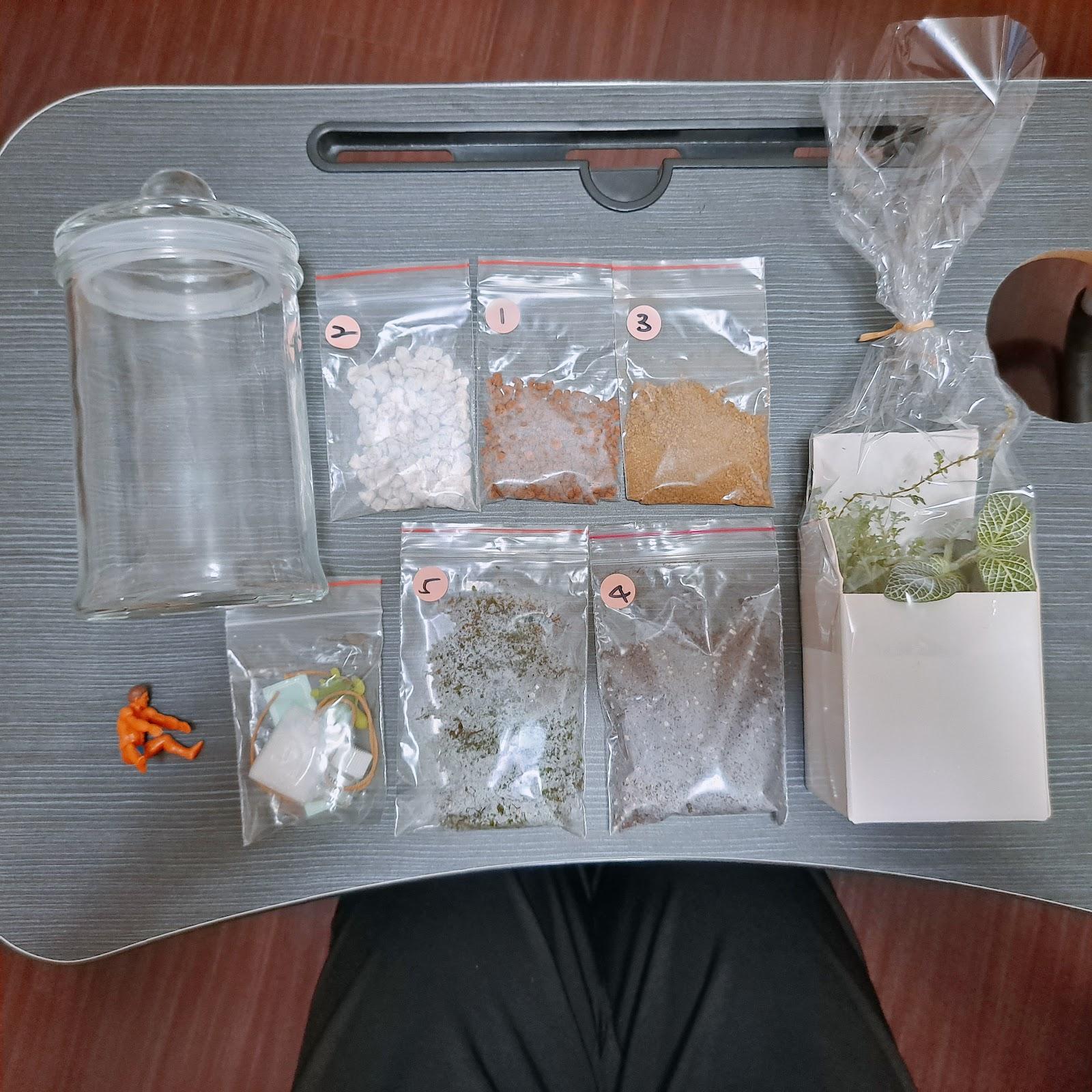 ▲生態瓶材料包▲
