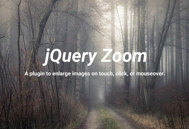 Jquery Plugin For Zooming Images On Mouseover - jQuery Zoom | jqueryHub