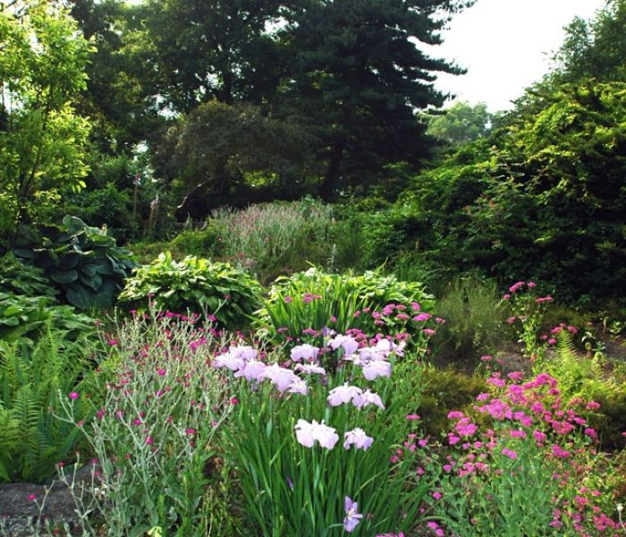 The three-acre Heather Garden with its 500 varieties of plants, trees, and shrubs.