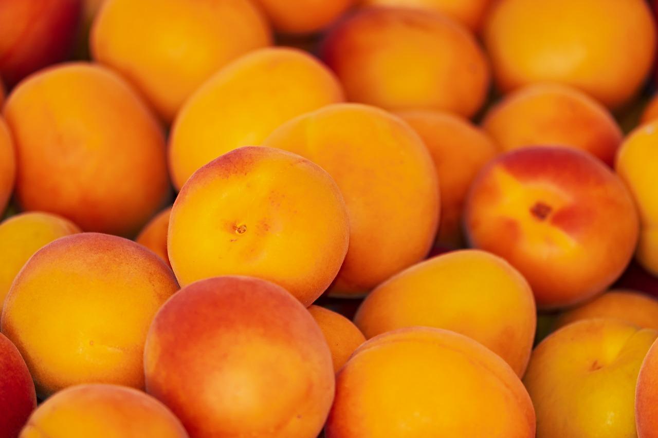 värsked aprikoosid