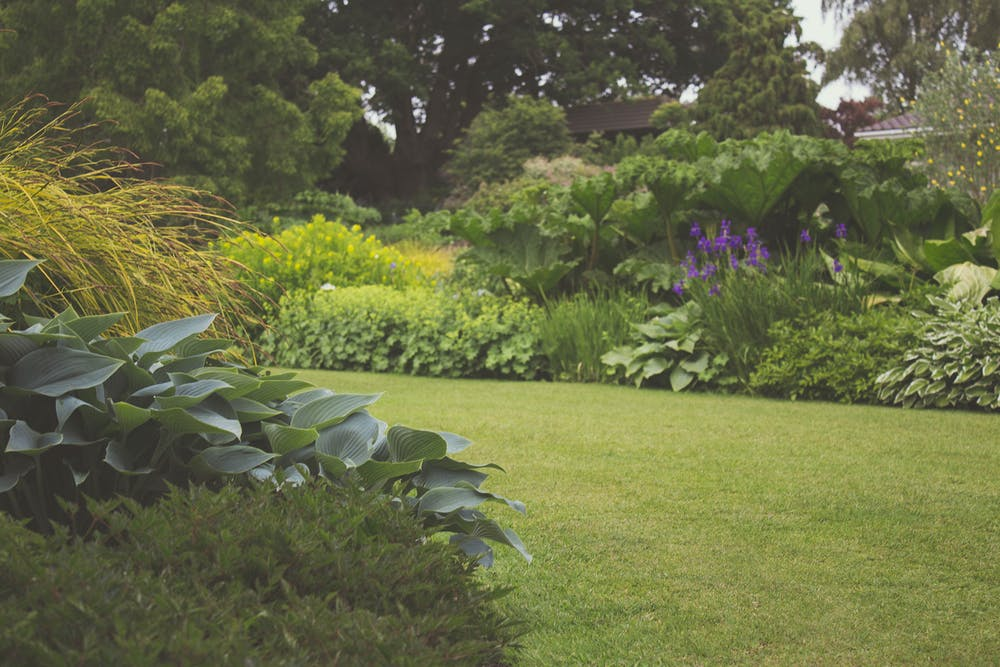 Is There Such A Thing As A Maintenance-Free Garden?