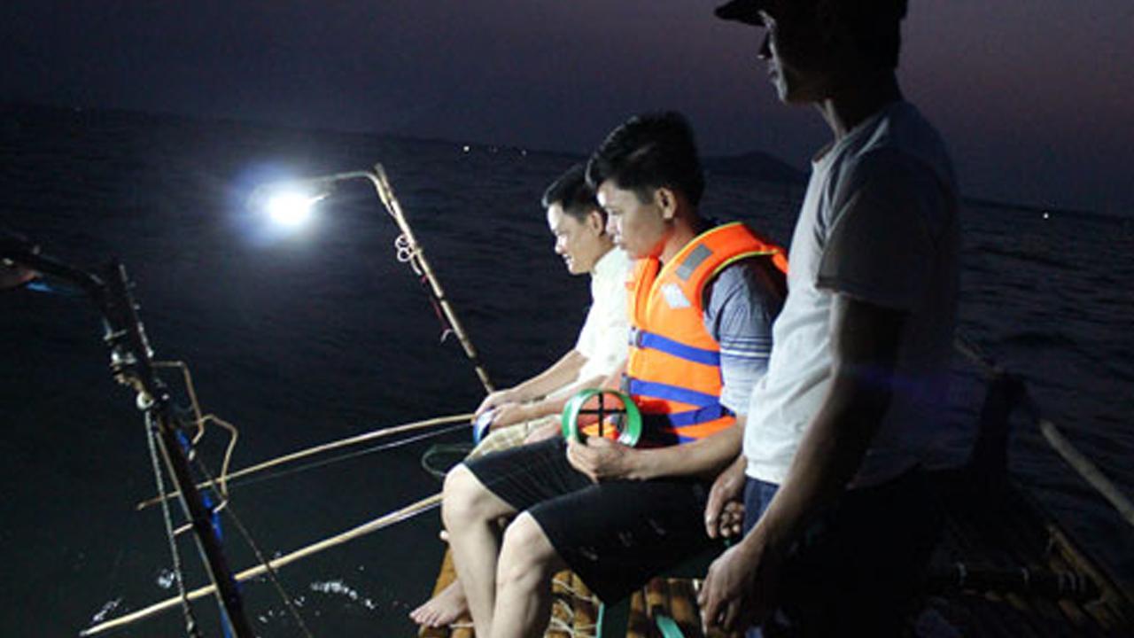 Câu cá mực ban đêm trải nghiệm thú vị trong tour du lich coto
