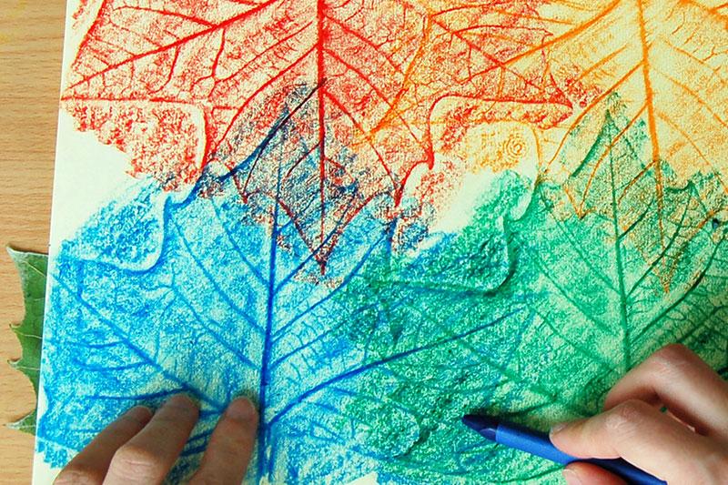 Leaf Rubbings craft