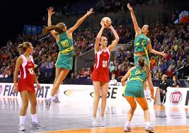 Image result for net ball game