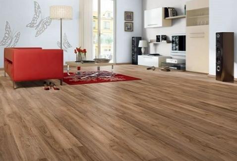 Kết quả hình ảnh cho Đại lý sàn gỗ công nghiệp