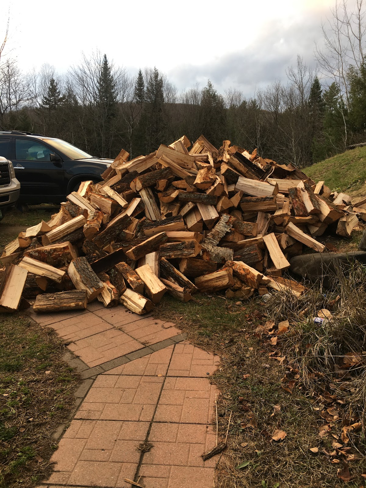 A load of firewood we had delivered. About two loads.