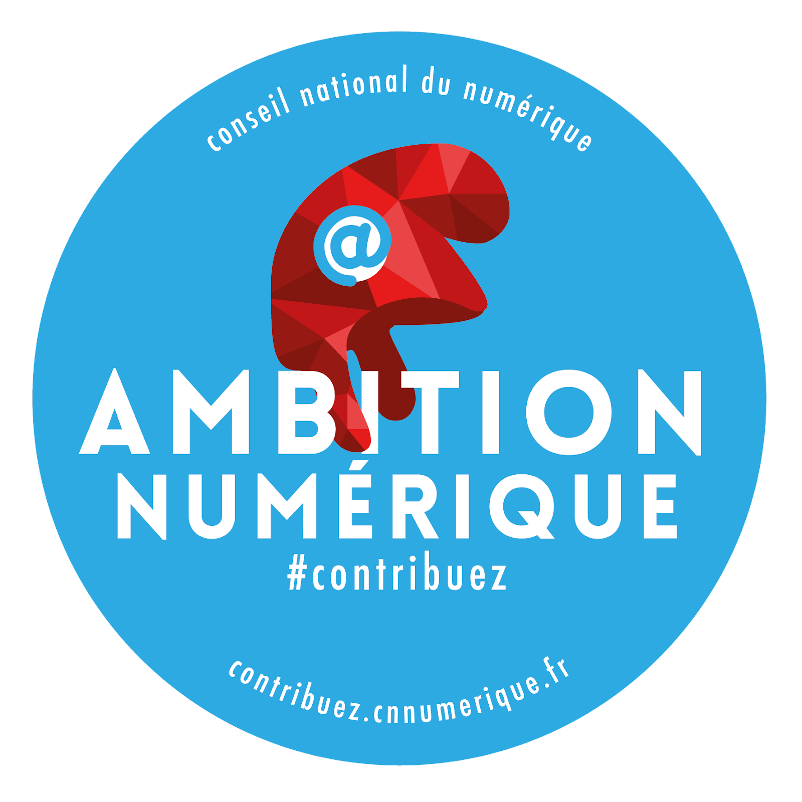 http://www.cnnumerique.fr/wp-content/uploads/2014/10/Stickers-Ambition-HD.png