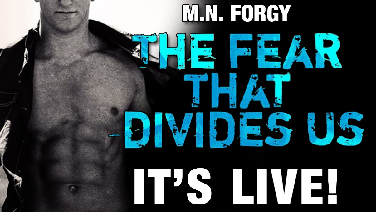 the fear that divides us live.jpg