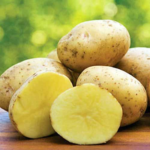 Yukon-Gold-Potatoes.jpg