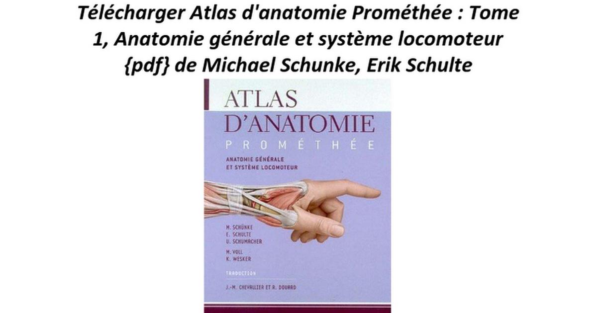 Ungewöhnlich Finger Ziffern Anatomie Bilder - Anatomie Ideen ...