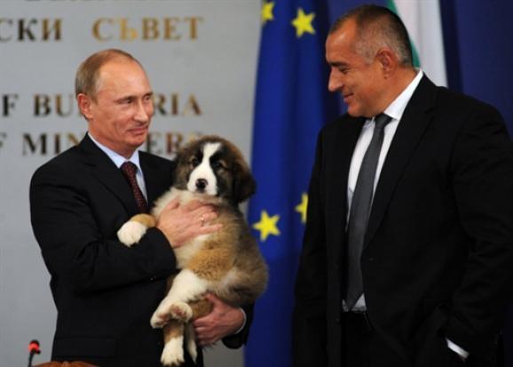 В Украине много структур и секретных предателей, поддерживающих отношения с Кремлем, - докладчик Европарламента Галер - Цензор.НЕТ 9345