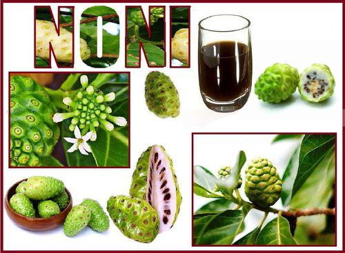 NONI-TAHITIAN-JUICE-3.jpg