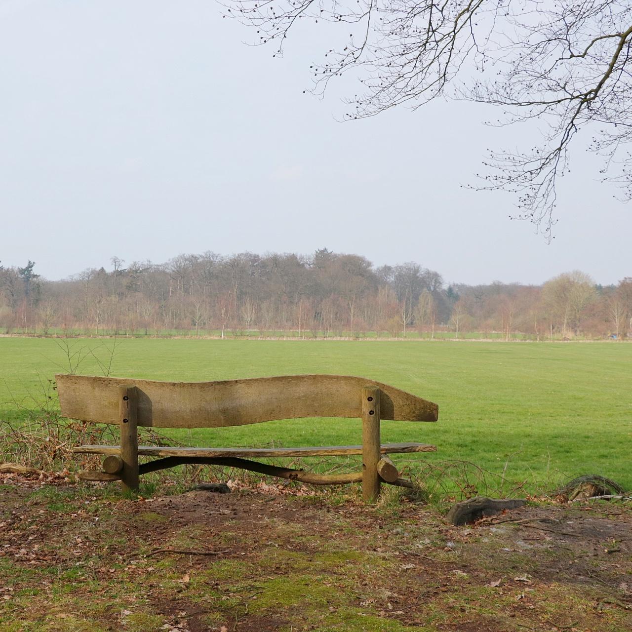 piknik bij de 's-Gravelandse buitenplaatsen