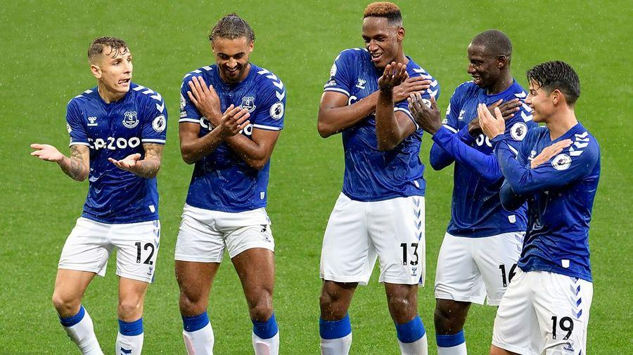 Image result for everton win