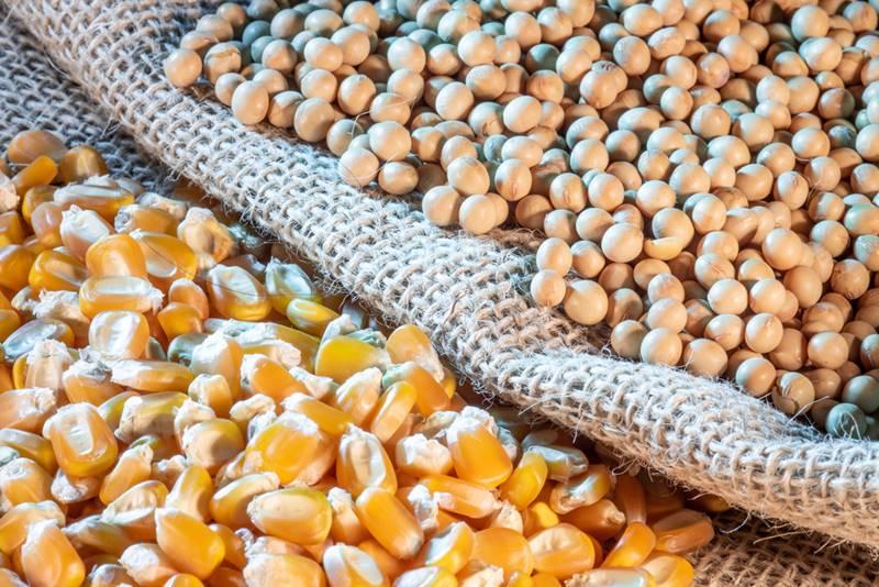O Brasil importa uma grande variedade de produtos para vários países (Fonte: Shutterstock).