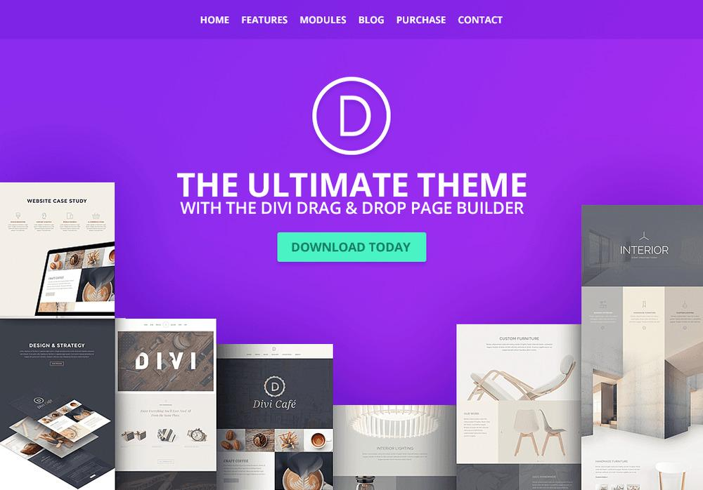 Image result for divi theme