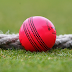 Everything You Need to Know About India's Pink Ball Cricket