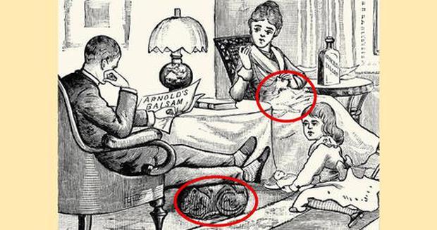 Solução: os dois felinos estão localizados aqui no gráfico da família na sala deste desafio viral.  (Foto: Facebook)