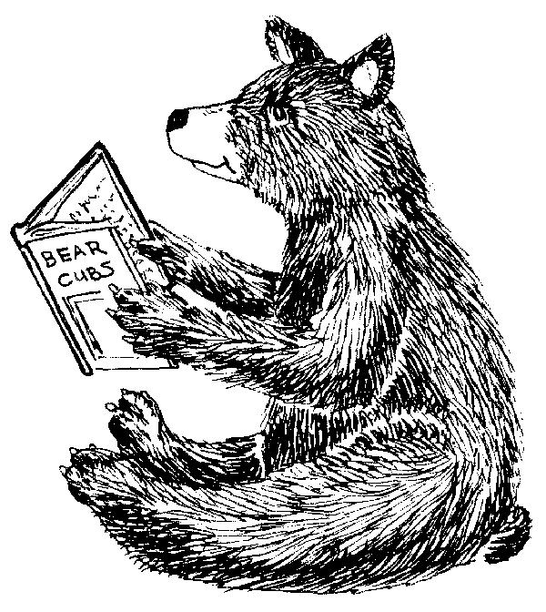 bear cub.png