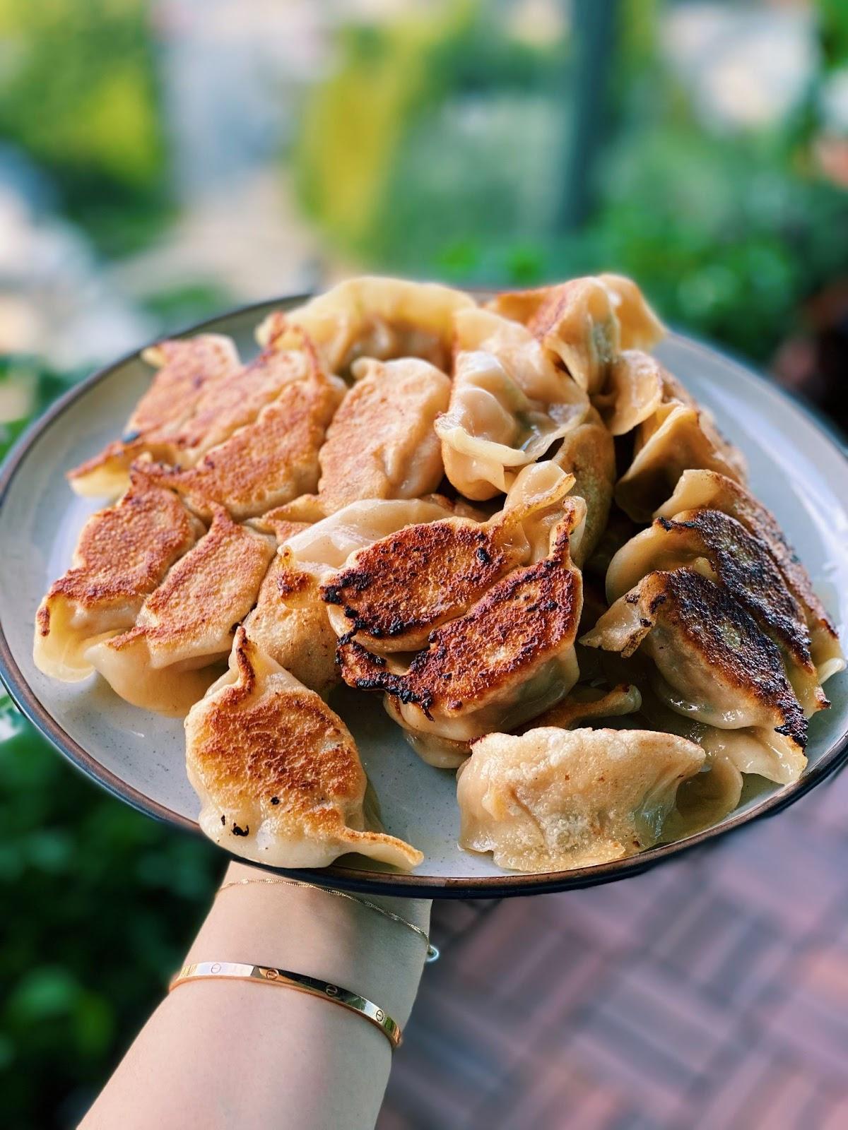 Chicken Dumplings (SUPER JUICY)