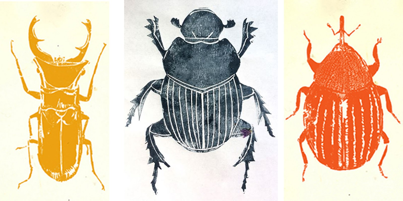 Ink prints of several different beetles