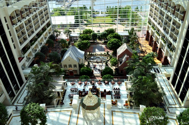 A photo of the Gaylord Convention Center